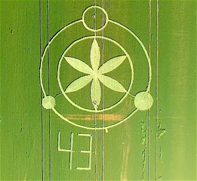 Comment of researchers speaks about the origin of crop circles.