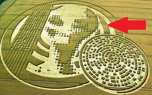 misteri-crop-circle