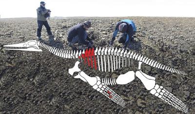Fosil Monster Laut Plesiosaurus Ditemukan di Antartika