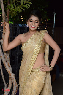 Actress Yamini Bhasker Pictures in Saree at anic Movie Audio Launch  0052.JPG