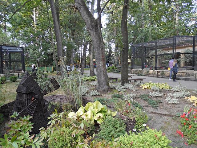 zoo, Nowy Tomyśl, zwiedzanie, klatki, wybiegi