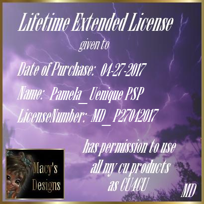 Lifetime License - Macy's Designs