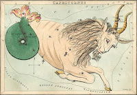 Capricorn  SeaGoat Constellation