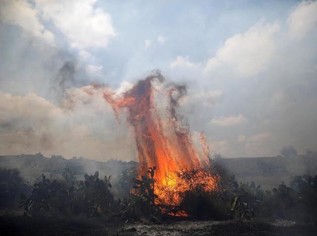 Layang-Layang Api Palestina Bikin Zionis Israel Kewalahan
