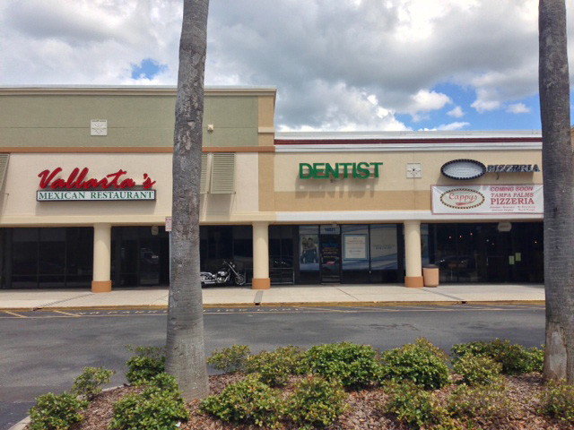 New Restaurants Opening In Tampa Palms