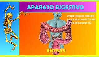 http://www.ceiploreto.es/sugerencias/averroes/manuelperez/udidacticas/udanatomia/digestivo/index.htm