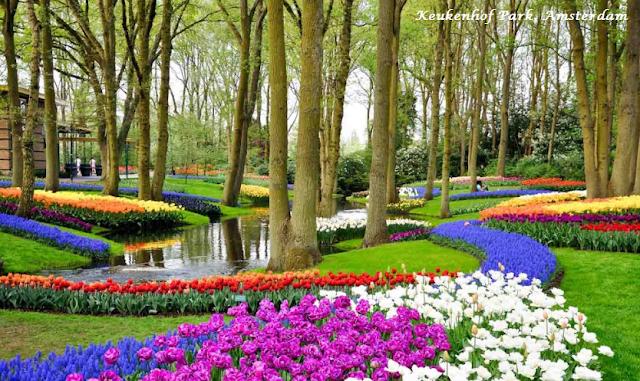 Keukenhof Park, Amsterdam