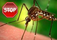 Πώς να προστατευτείτε από τα κουνούπια και από τις ασθένειες που μεταδίδουν
