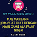 EDISI BLAS: Jom Buat Duit dengan Maybank Anytime Everyone (MAE) Aplikasi E-Wallet ala-ala Game Fruit Ninja!