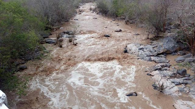 Em Delmiro Gouveia, riacho Olho D'Água, fica cheio após chuvas