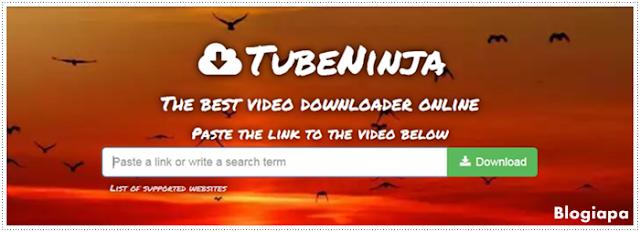 Tube-Ninja-Logo
