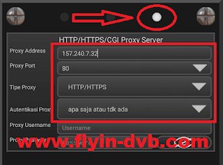 Pengaturan HTTP/HTTPS/CGI Proxy server Your freedom
