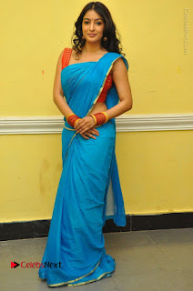 Telugu Actress Vaibhavi Stills in Blue Saree at Www.Meena Bazaar Movie Opening  0099.JPG