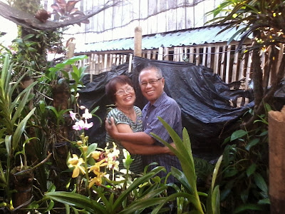 Hugging each other in an orchids garden - 2