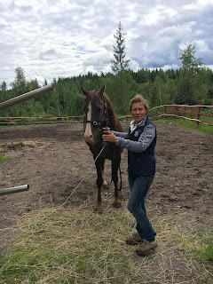 working equitation, Riitta reissaa, Hanne Halonen, Ratsureima ranch