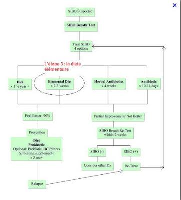 elemental diet (diète élémentaire) pour le SIBO