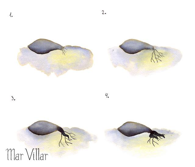 Inktober, Inktober 2016, plantas, planta suculenta, ilustración a tinta, silueta humana, tinta, aguada de tinta, quink, tinta parker