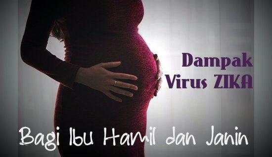 Dampak Virus Zika Bagi Ibu Hamil dan Janin