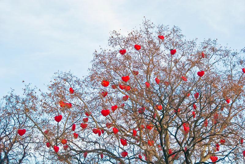 Merisi's Vienna For Beginners: Tree Hearts Heart Tree At