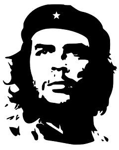 One of Che guevara favorite books is 'Mein Kempf'