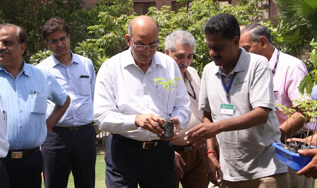 Planting a tree to offset the DMRC carbon footprint on World Environment Day