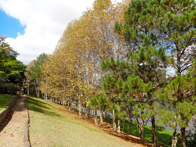 Parque Toronto