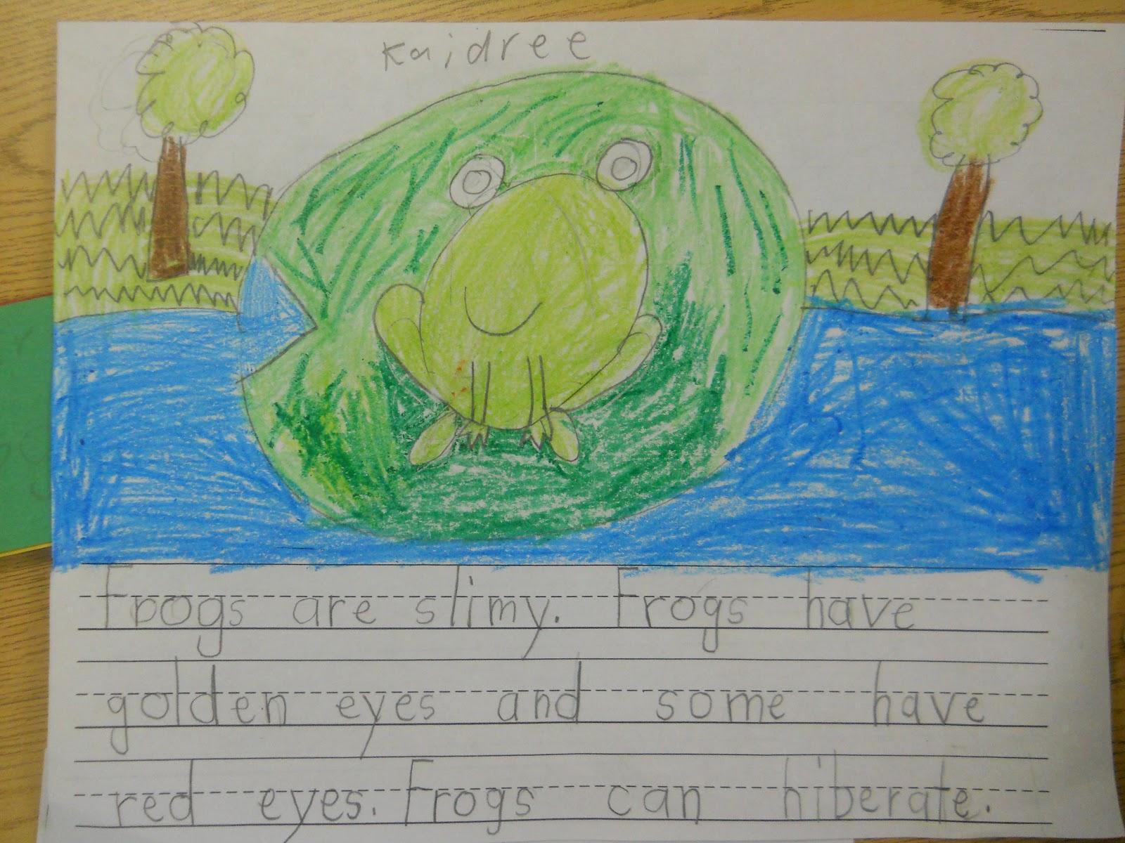 Mrs T S First Grade Class Frog Writing