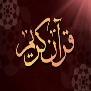 download-holy-quran-written-pro-apk