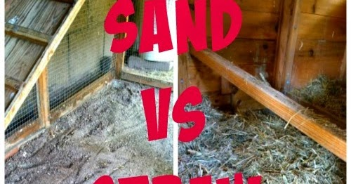 Sunny Simple Life Sand Vs Straw Or Shavings In The Coop
