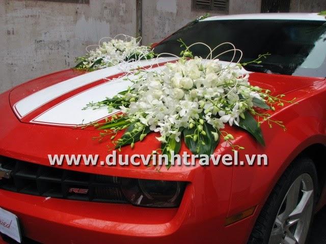 Xe cưới Camaro đỏ nổi bật của cặp đôi du học sinh Mỹ - DUC VINH TRANS 2