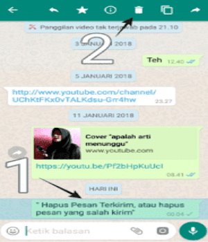 Hapus pesan salah kirim WhatsApp