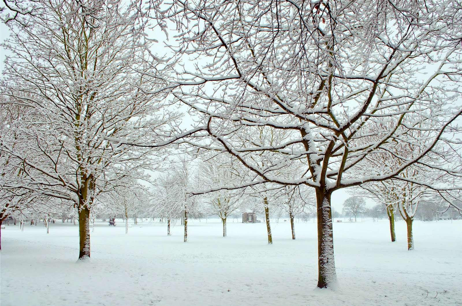speech on winter season