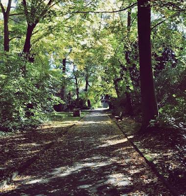 jesień, ksiązki cytaty