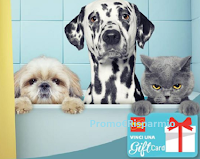 Logo Concorso ''Piccolo pasticcione'' e vinci gratis Card Penny Market da 25€