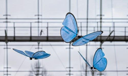 Festo - butterflies