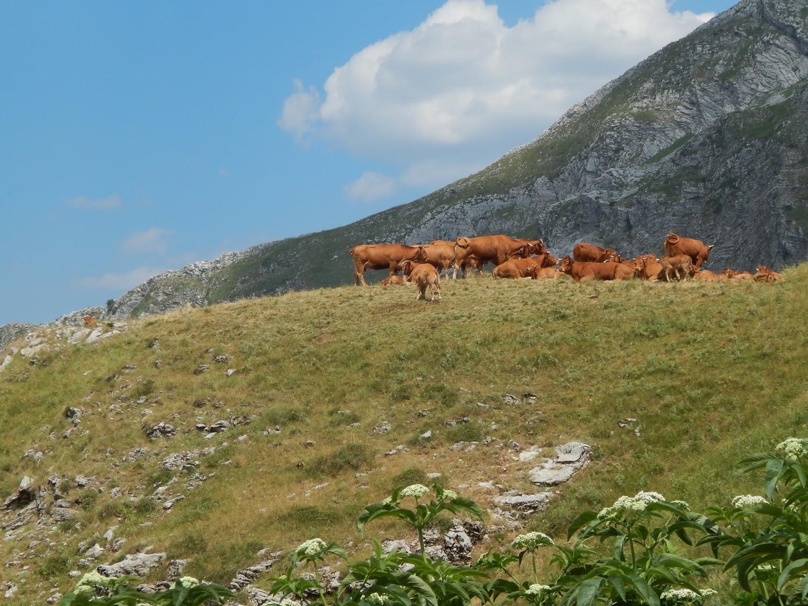pohoří Tzoumerka Řecko