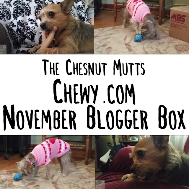The Chesnut Mutts November Blogger Box