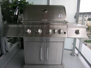 Jackson Grills Stainless Steel BBQ