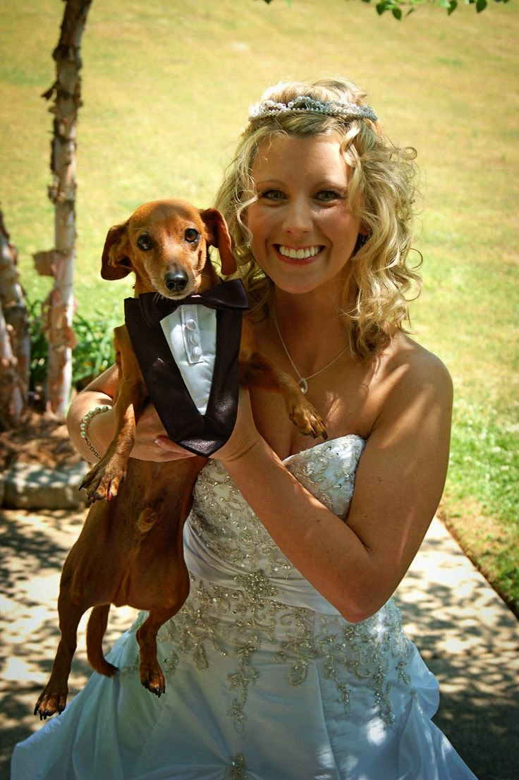 Cute Best Puppy And Beautiful lady
