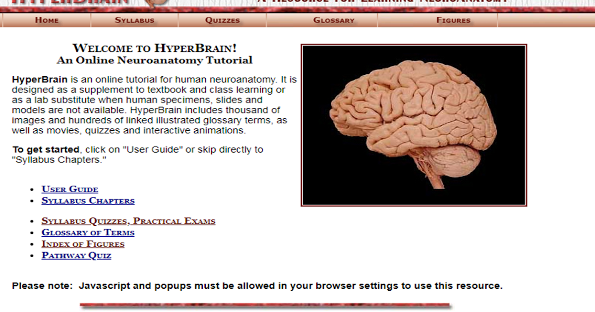 neuropathology blog: Hyperbrain: a great resource for learning