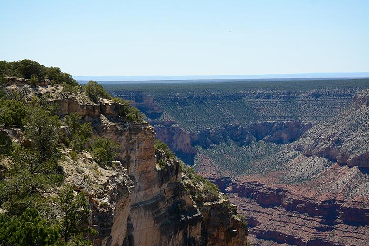 Grand Canyon - South Rim | My Darling Days