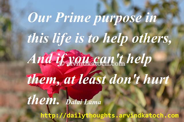 Prime, Purpose, Life, Dalai Lama, Hurt, Thought, Quote, Picture
