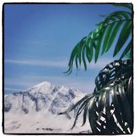 Mont-Blanc en terrasse