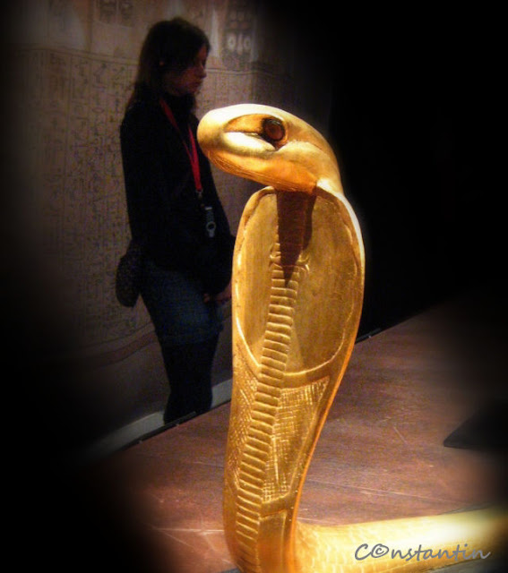 Tutankhamon - cobra de aur (descoperita in mormant)