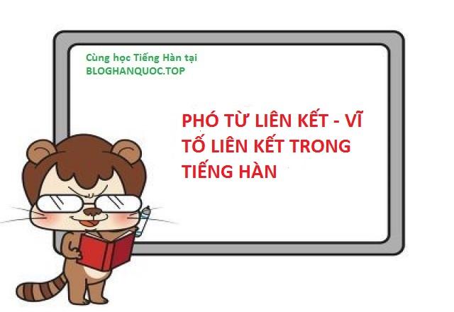 pho-tu-lien-ket-vi-to-lien-ket-trong-tieng-han