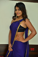 Actress Priya in Blue Saree and Sleevelss Choli at Javed Habib Salon launch ~  Exclusive Galleries 049.jpg