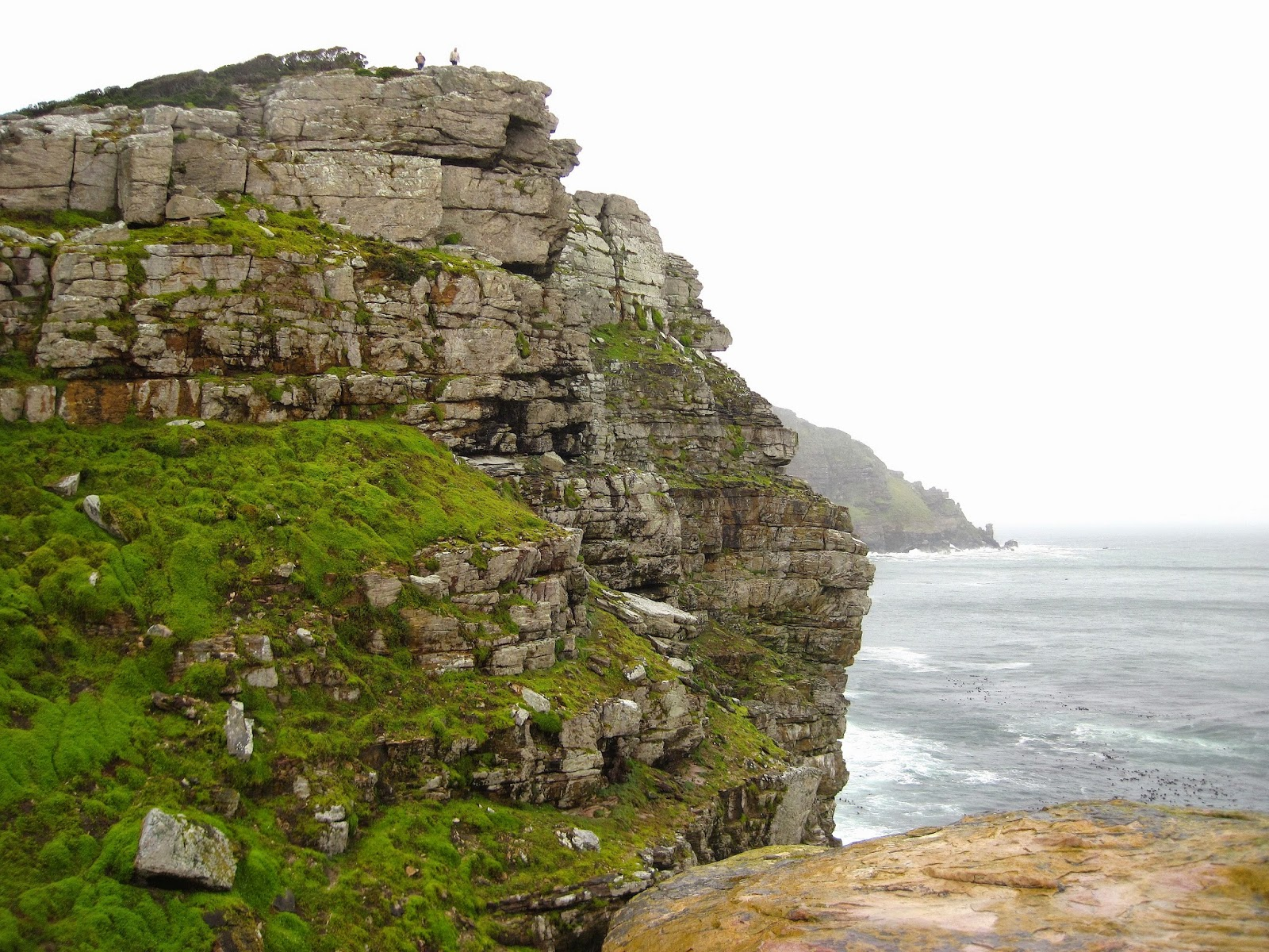 Cape Peninsula Cape of Good Hope