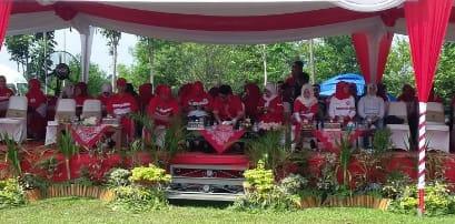 Dalam Rangka HUT RI Ke 73,Kab Pali Gelar Karnaval