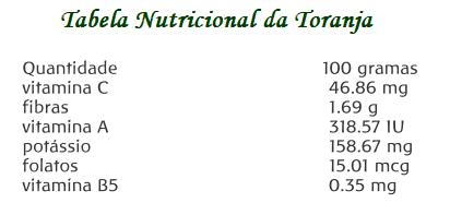 Tabela Nutricional da Toranja (Citrus paradisi Macfad.)