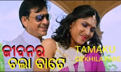 siddhant mahapatra and naina das in Tamaku Dekhila Pare